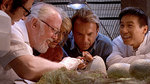 "Watch the movie clip ""Life Finds A Way"" from ""Jurassic Park"""