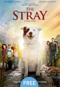"""The Stray"" movie clips poster"